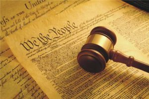 The constitution preamble